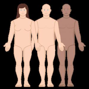 alex-skin-tones